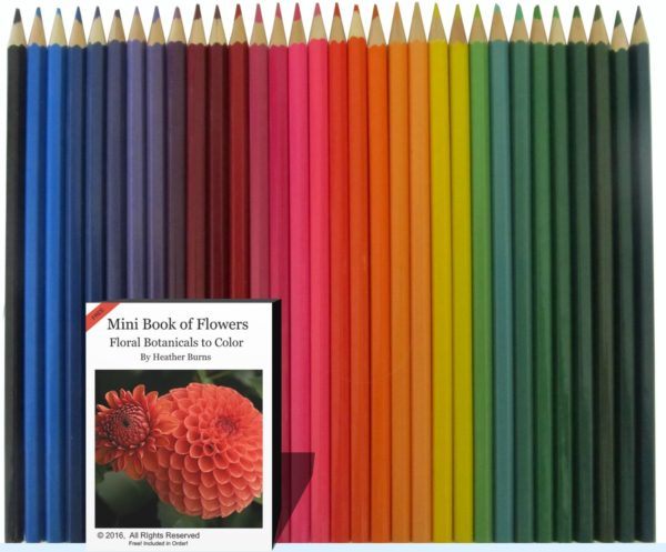 Aurora Art Supplies 48 Piece Colored Pencil Set
