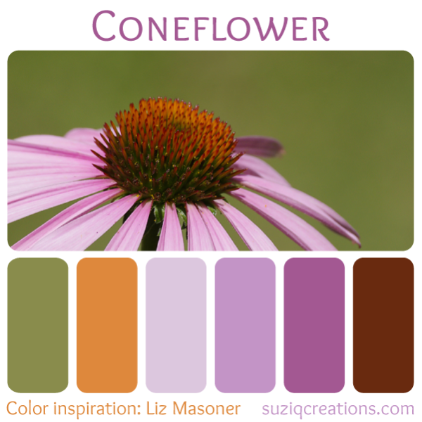 Coneflower - Color Inspiration from Nature