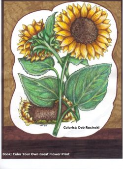 From Dover Color Your Own Great Flower Print book, colored by Deb Rucinski
