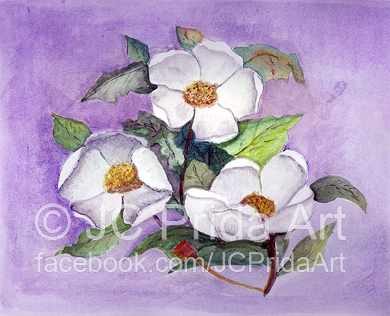 Three Magnolias