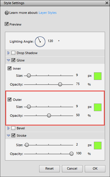 Edit Style Settings in Photoshop Elements
