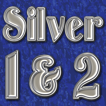 Silver Layer Styles Vol. 1-2 Designer Pack Thumbnail