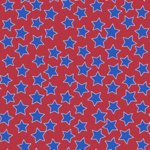 Americana Seamless Pattern 107