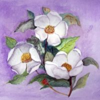 Southern Magnolia Watercolor